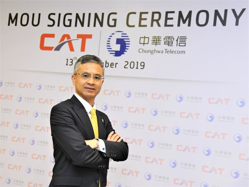 CAT MOU 3