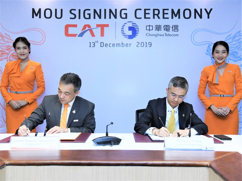 CAT MOU 4